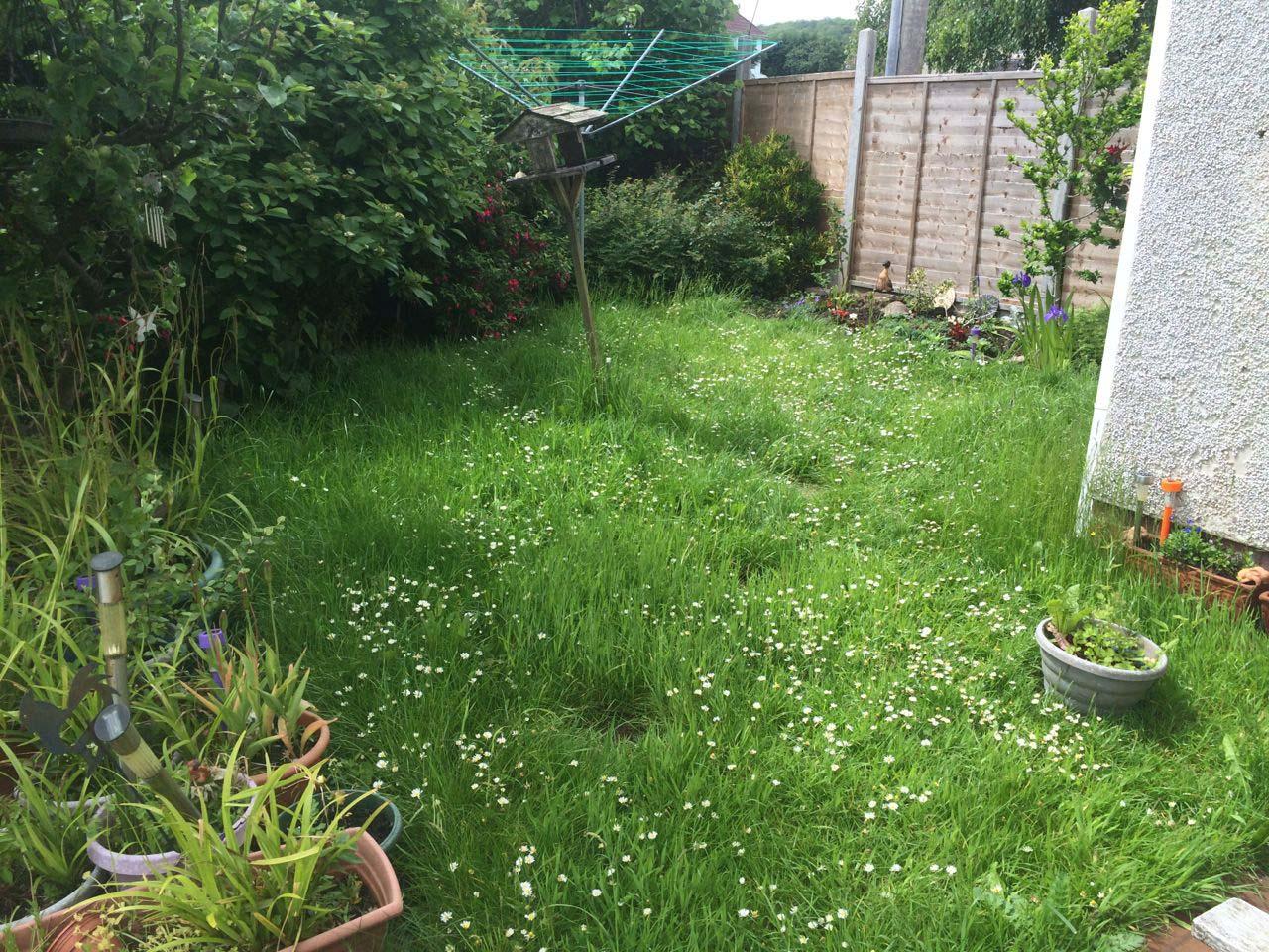 Grass Cutting Weston super Mare Before