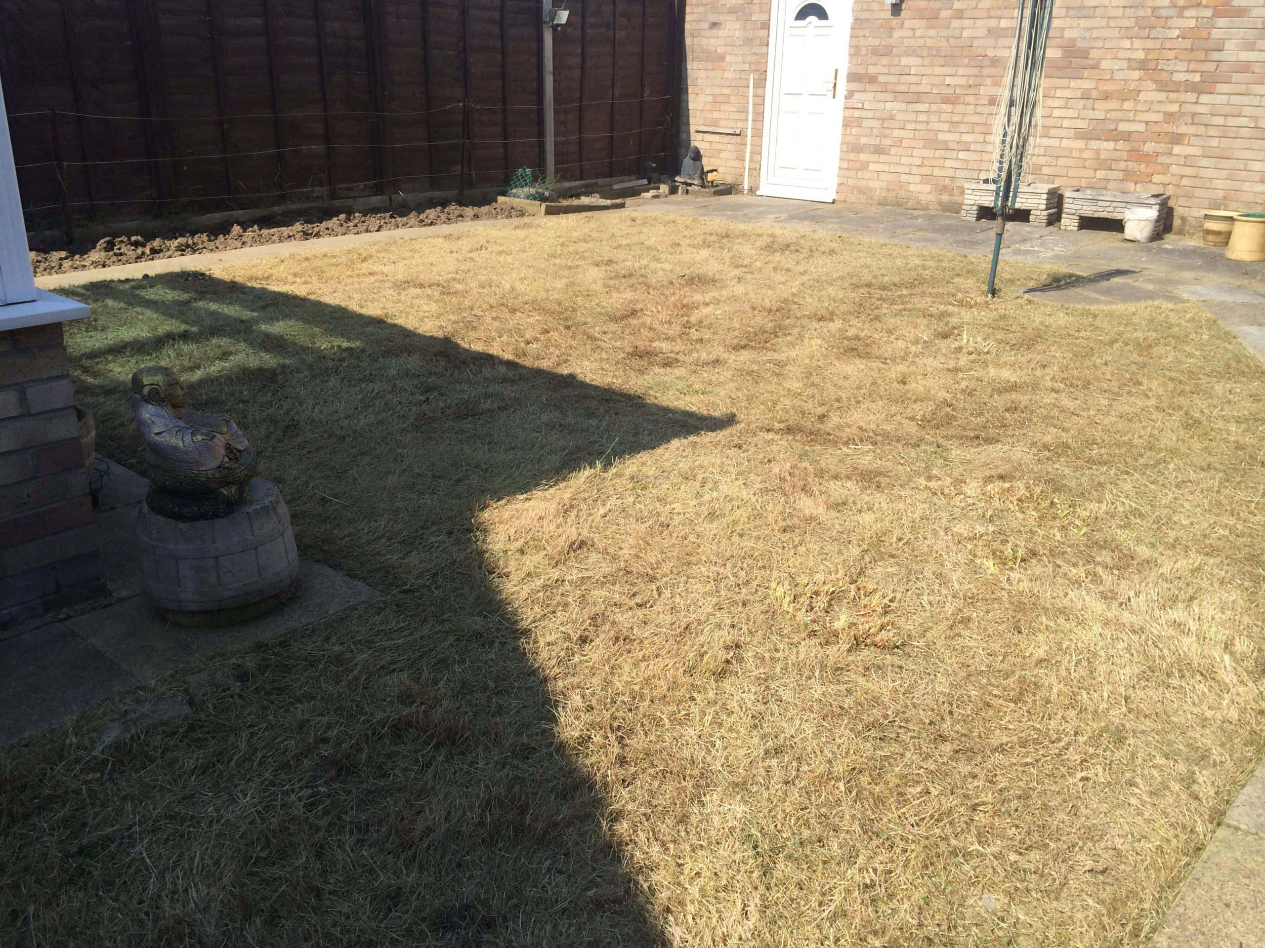Grass cutting and Border work after