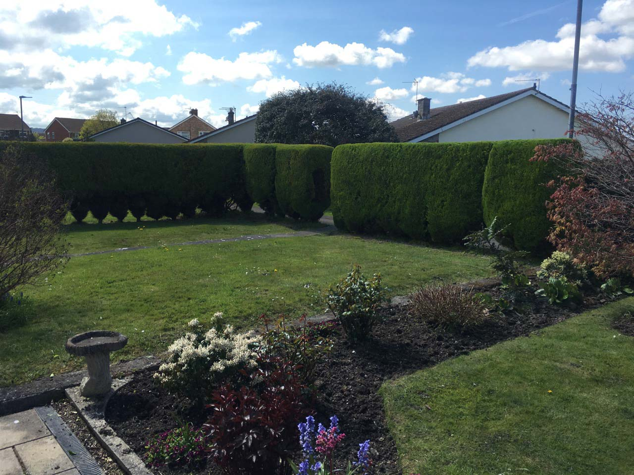 SMB offer a regular Maintenance or one off Hedge Cutting, Hedge Trimming and Hedge Reduction Service in Weston-super-Mare and surrounding areas. So, whether its shaping or reducing the height of your Conifers or Hedge, to Pruning or felling your Tree - let our experts offer their professional advice on maintaining your Conifers, Hedges, Shrubs and Trees.