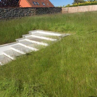 Overgrown grass cutting before